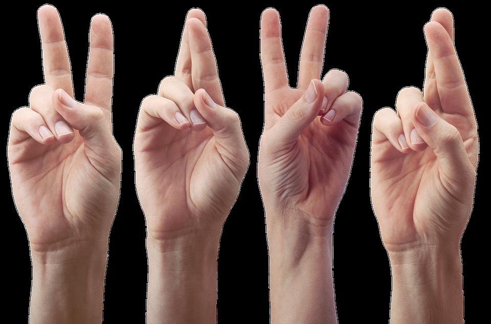 nombres de los dedos