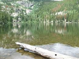 costa del lago del gran oso