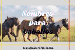 nombres_para_caballos
