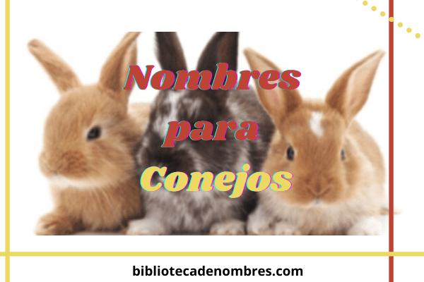 nombres_para_conejos